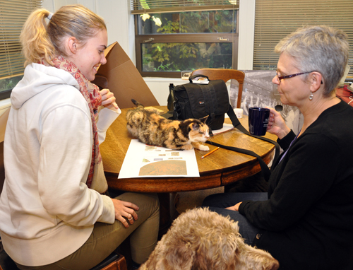 Pets help with the design process as Natalie Banaszak, left, and Sandra Lucs look on.