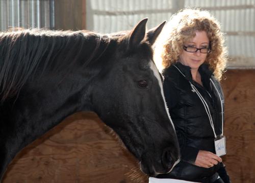 CME dean Julia Christensen Hughes leads a horse.