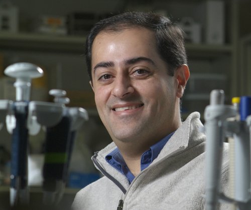 Prof. Shayan Sharif.
