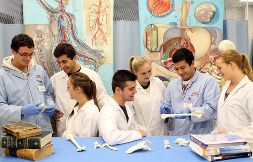 U Of G Anatomy Program Adds Multimedia Teaching Tools U Of G News