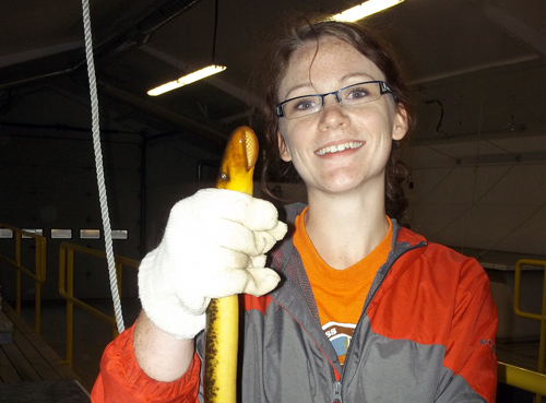 McLean holds a sea lamprey.