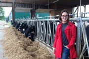 Genomics Research Helps Breeders Select the Next Generation of Cattle