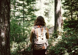 Hiker in the woods, researching Powassan virus at University of Guelph.