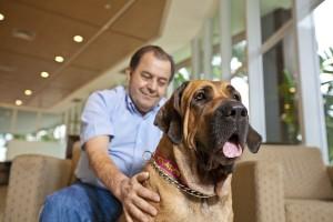Dog visits man at hospital