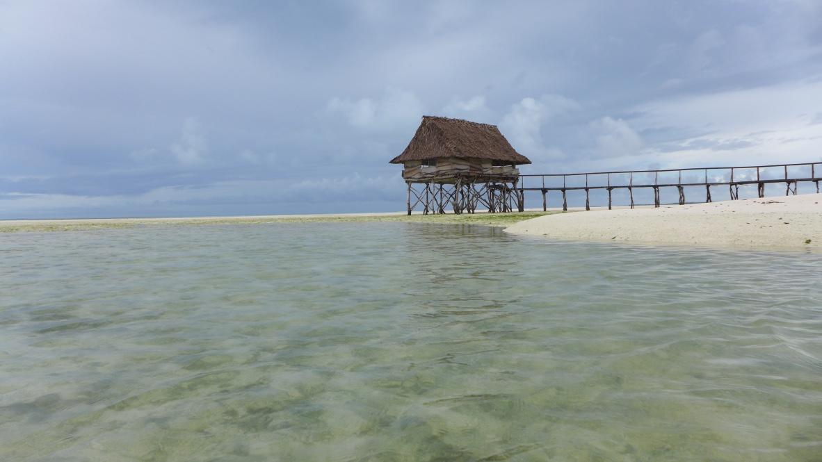 Gray Kiribati 1 -- av