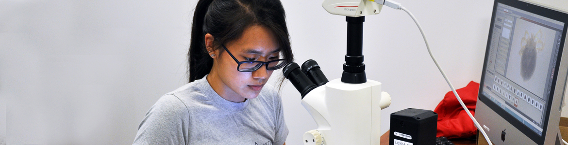 Zoology Student taking photos of water mites