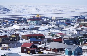 University of Guelph researchers take one health approach to illness in Canada's North.