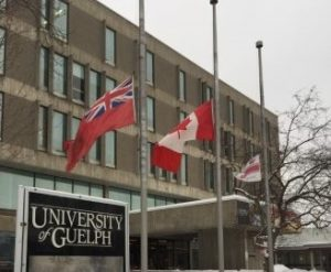 Flags at half-mast in front of the University Centre