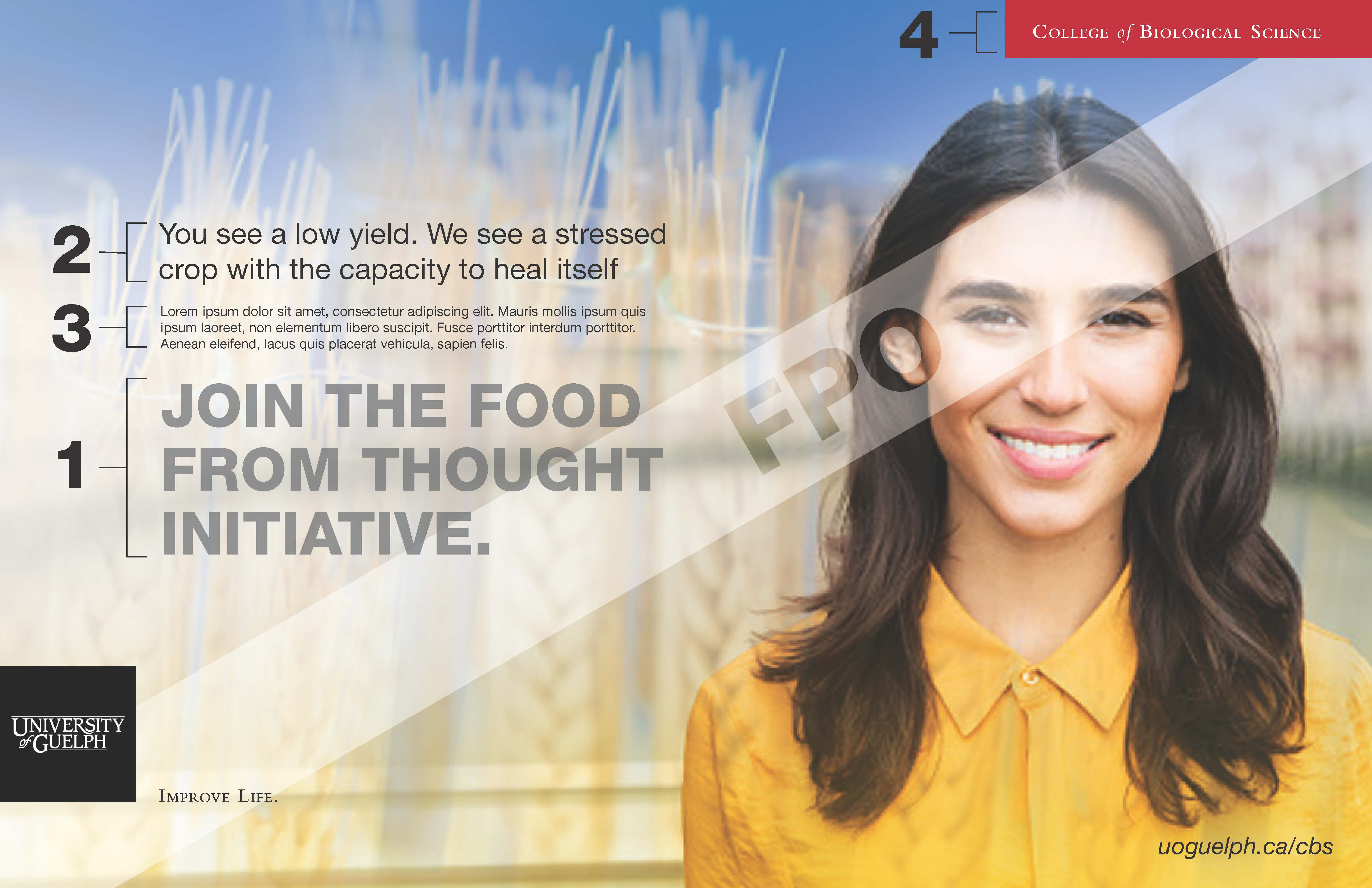 Sample adverstisement indicating four elements of an ad layout