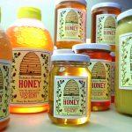 University of Guelph honey