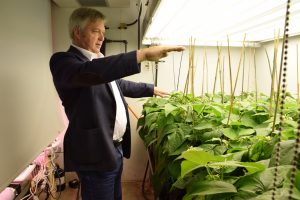 Prof. Mike Dixon in green house