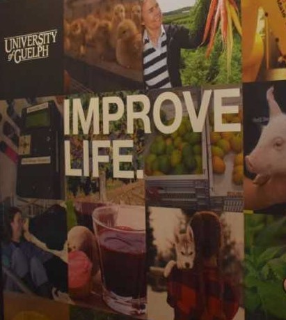 New U Of G Accelerator To Launch Agri Food Ideas Innovations