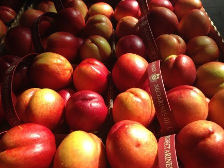 several baskets of nectarines