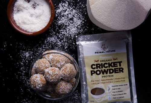 Cricket protein powder in a bag next to some baked goods
