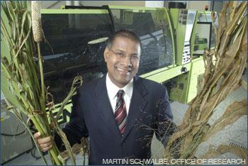 Prof. Amar Mohanty holding up corn stalks