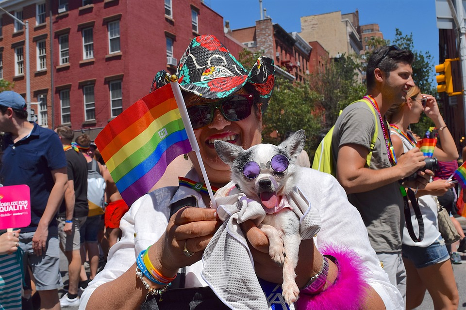 person at Pride parade in NYC holding small dog and small rainbow flag