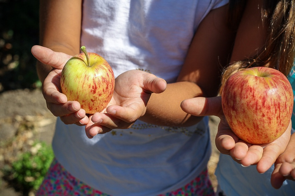 two kids, holding one apple each in their palm