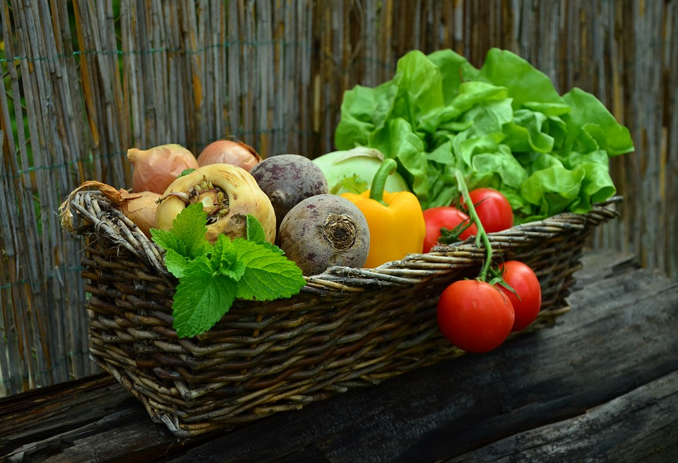 basket of fresh veggies and herbs: mint, rutabaga, parsnip, tomatoes, lettuce, onions, beets, pepper