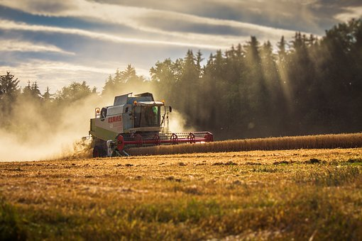 photo of combine in a field of wheat