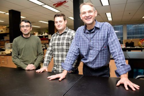 photo of Prof. Frederic Laberge, PhD student Caleb Axelrod and Prof. Beren Robinson standing in lab in front of a counter