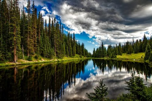 photo of a lake surround by evergreen trees