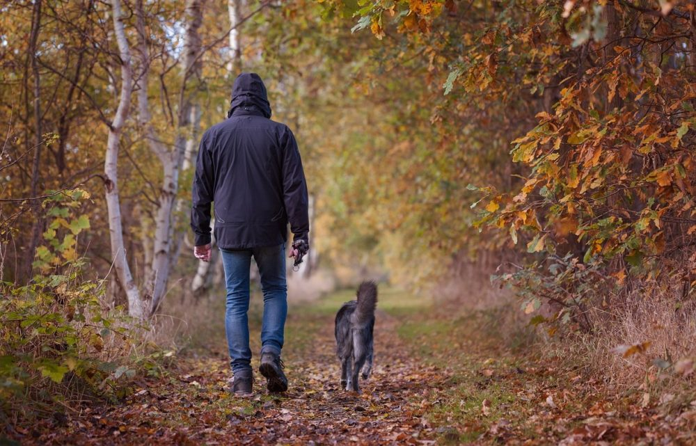 A photo of a man walking his dog in a forest