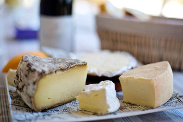 Lab-Grown Dairy: The Next Food Frontier