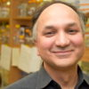 World Food Day: U of G Research Focused on Sustainable Crops