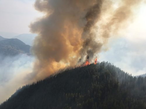 Wildfire on the top of hill in southern BC