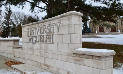 University of Guelph entrance
