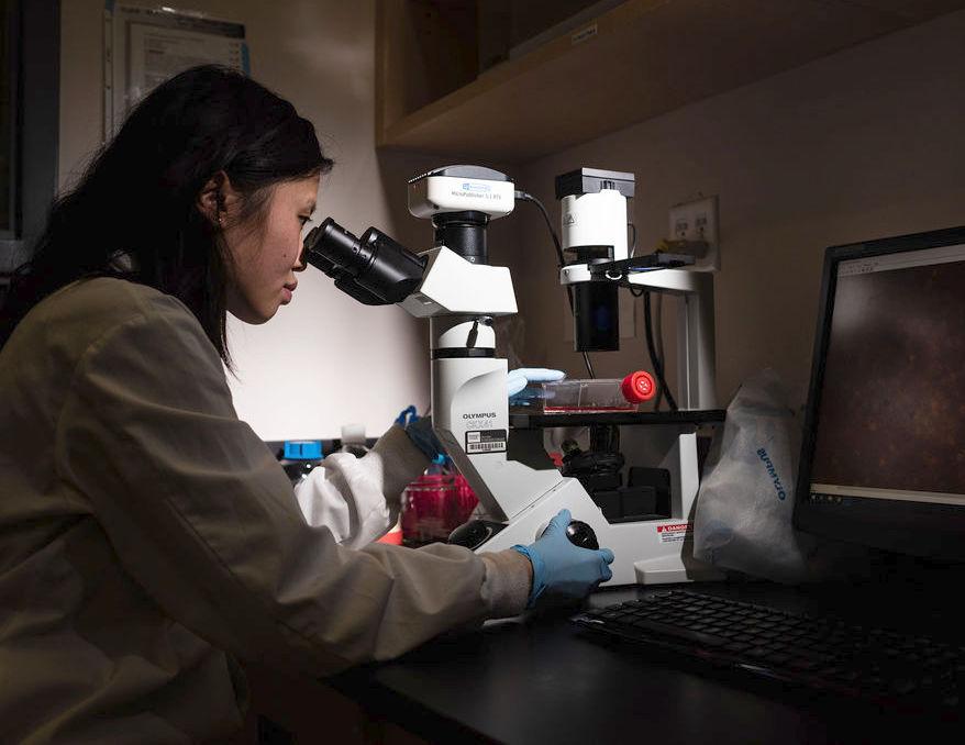 Anita Luu sits at a microscope
