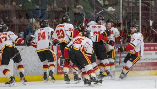 Celebration among hockey players