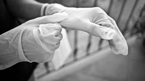 A close-up of hands putting on latex gloves