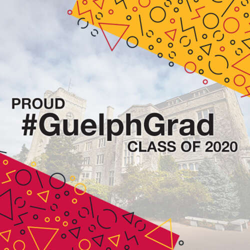 Graduation social media graphic