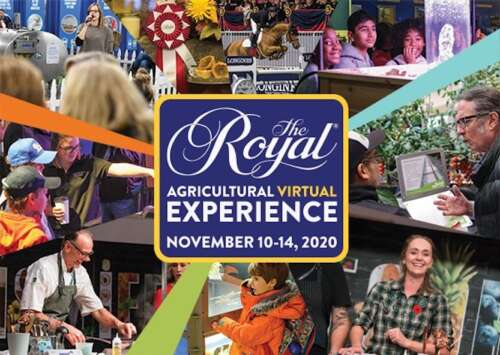 The Royal Agricultural Virtual Experience logo