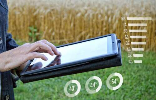 A researcher uses an iPad near a grain field