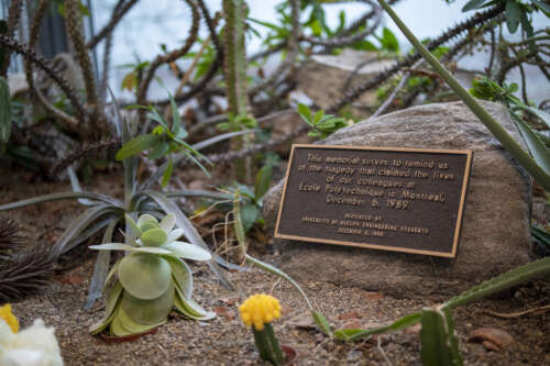 A plaque surrounded by plants