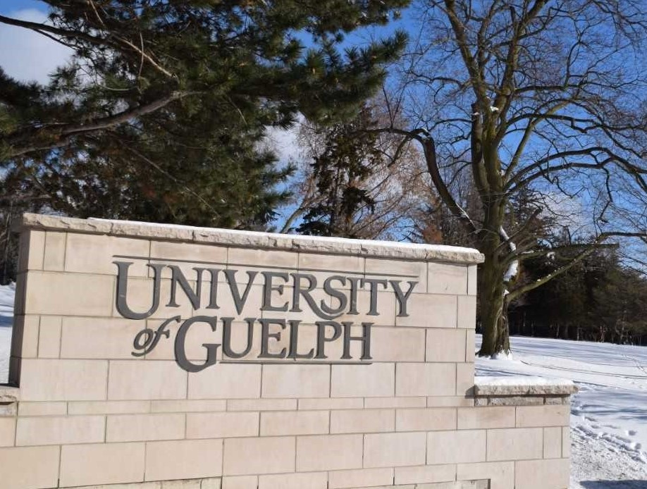 The University of Guelph wall sign is shown in winter