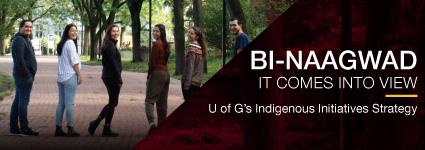 Indigenous Initiatives