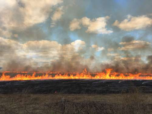 fire covering the horizon of the prairie with a blue sky and clouds in the back ground