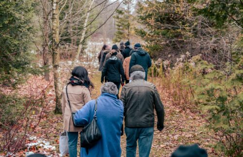 A group of people on a trail through woods