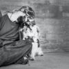 Pets of Homeless Are in Good Health, New U of G-Led Study Finds