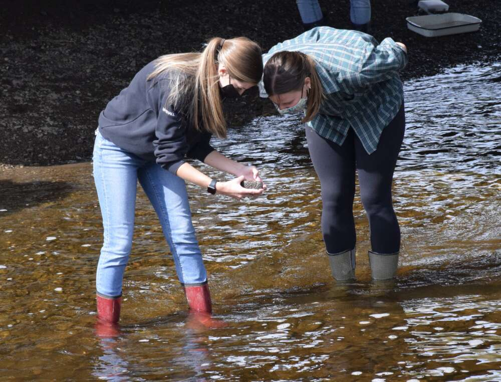 Two female students wade into a river
