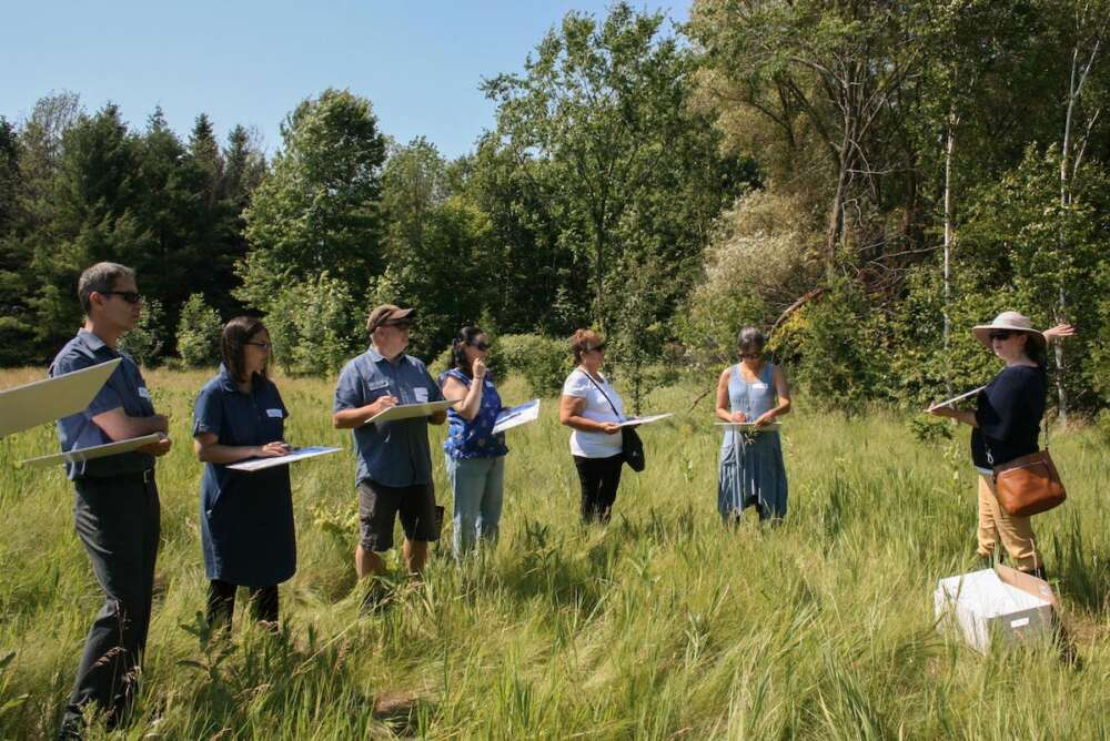 Community members holding clipboards stand in the tall grasses of an Arboretum field