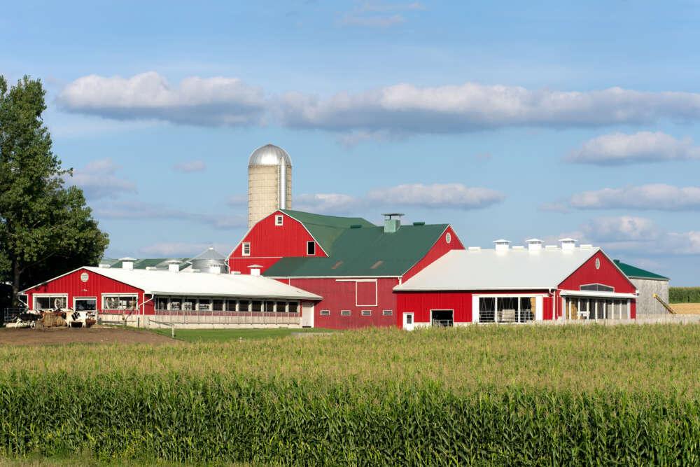red barn across a field